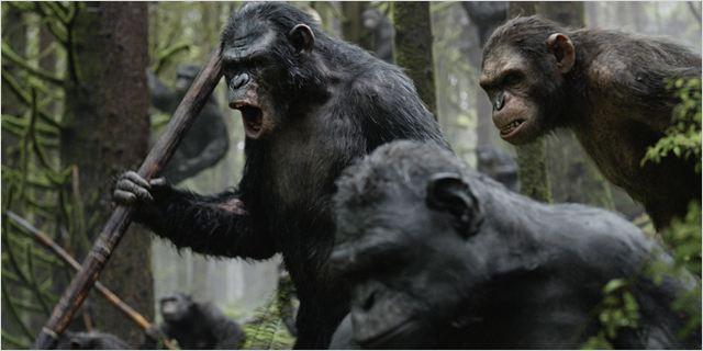 Planète des singes l'affrontement-13
