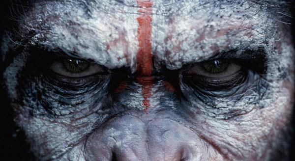 Planète des singes l'affrontement-15