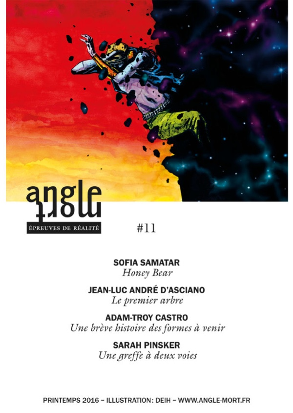 angle-mort-11-couverture