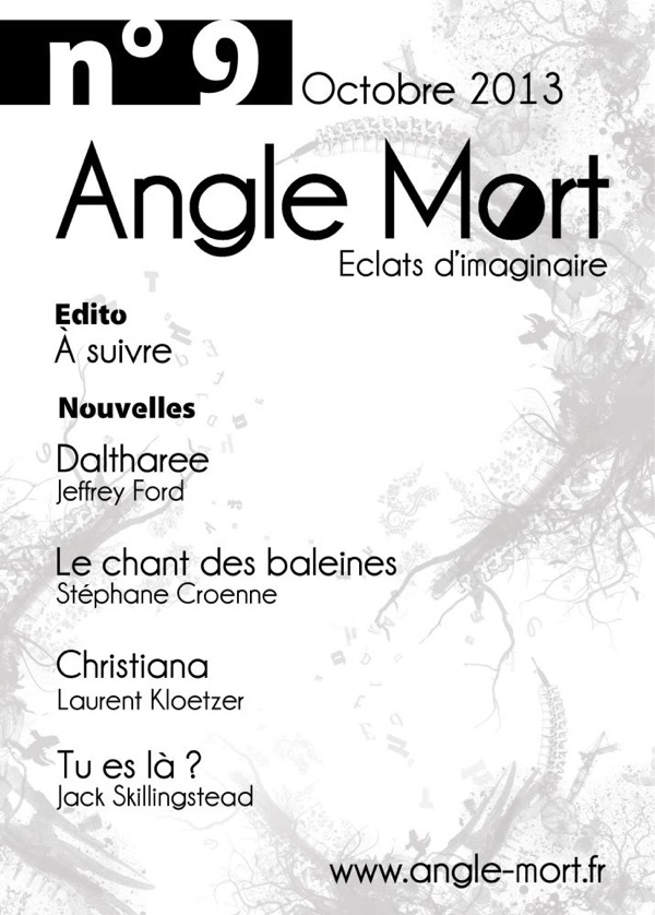 angle-mort-9-couverture